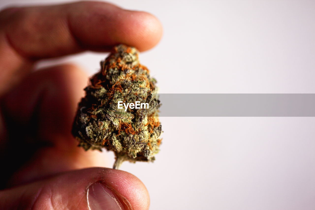 Cropped Image Of Hands Holding Marijuana Against Sky