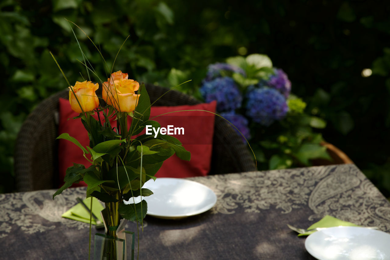 flower, table, plant, freshness, petal, fragility, nature, leaf, growth, no people, beauty in nature, outdoors, flower head, close-up, day