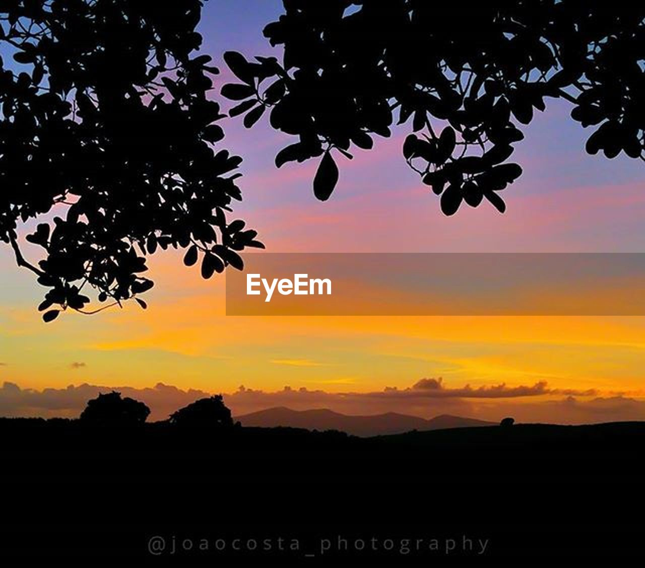 sunset, silhouette, tree, beauty in nature, orange color, nature, sky, scenics, tranquility, landscape, tranquil scene, outdoors, no people, cloud - sky, growth, mountain, day