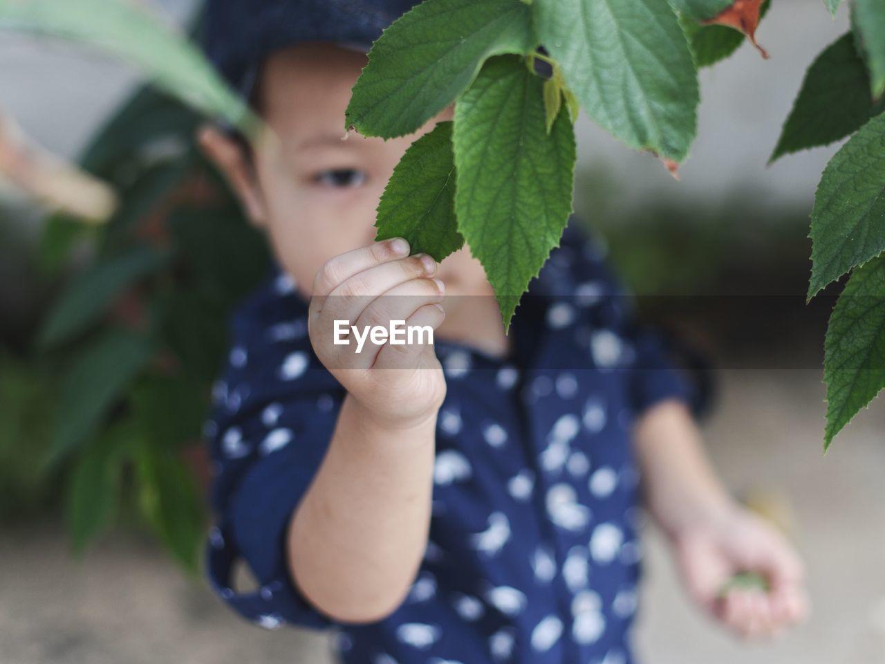 Boy holding leaf