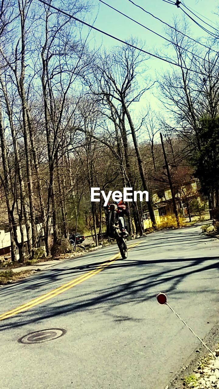 real people, tree, one person, transportation, road, leisure activity, day, lifestyles, riding, bare tree, outdoors, nature, sunlight, bicycle, men, sport, adventure, full length, sky, extreme sports, people