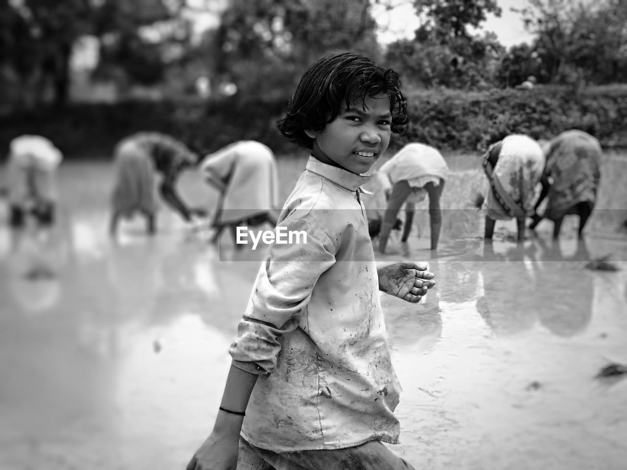 Portrait Of Boy Standing Against Farmers Harvesting Rice Paddy
