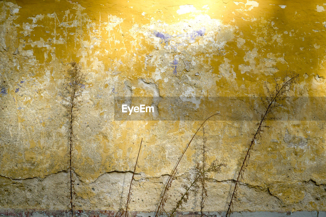 backgrounds, built structure, architecture, wall - building feature, yellow, textured, full frame, pattern, no people, weathered, close-up, solid, abstract, old, marble, dirt, outdoors, dirty, bad condition, wall, deterioration, concrete, abstract backgrounds, stone wall