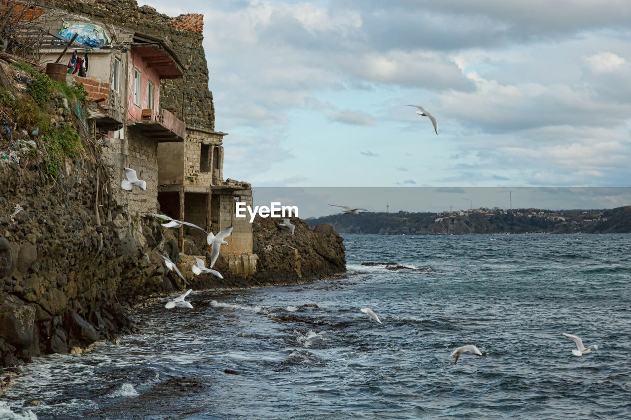 Birds Flying Over Sea By Houses Against Sky