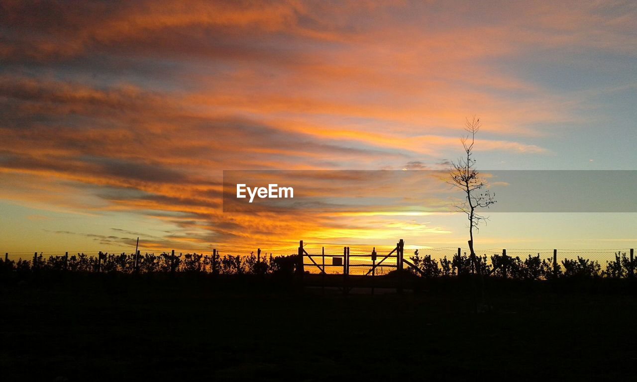 sunset, silhouette, nature, sky, beauty in nature, scenics, tranquility, tranquil scene, landscape, tree, cloud - sky, no people, outdoors