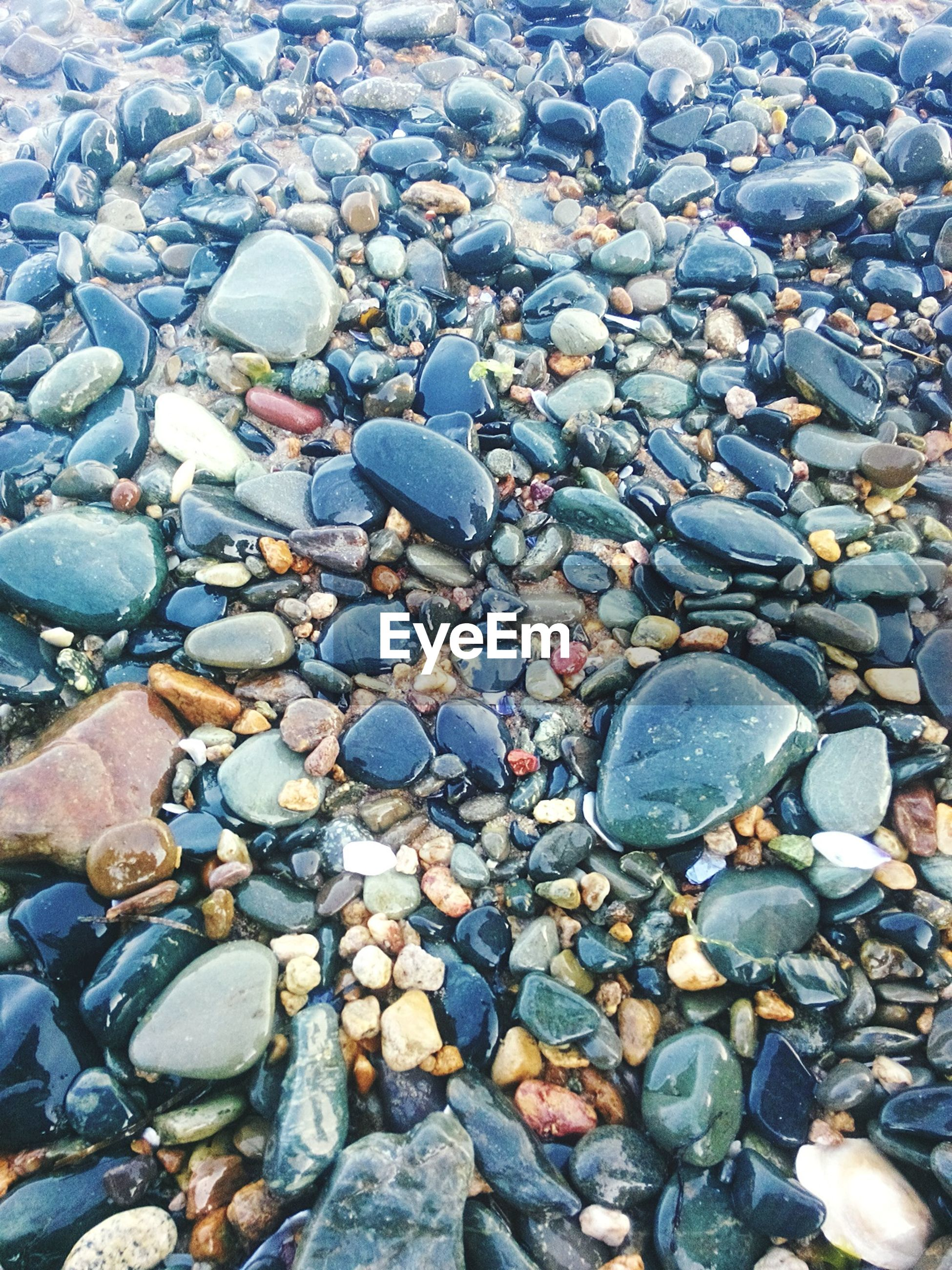 pebble, pebble beach, stone - object, shore, beach, full frame, nature, outdoors, abundance, large group of objects, backgrounds, day, no people, close-up, beauty in nature, water