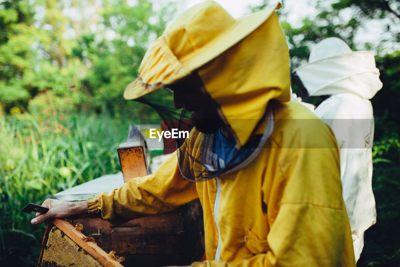 Beekeepers standing by beehives