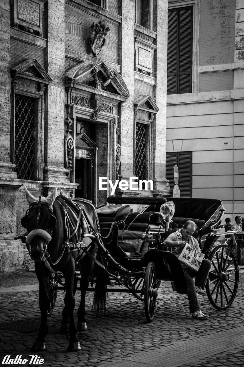 horse, horsedrawn, horse cart, transportation, carriage, built structure, architecture, building exterior, domestic animals, mode of transport, outdoors, day, animal themes, mammal, no people
