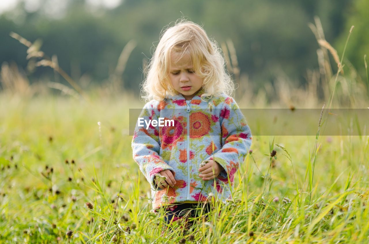 child, childhood, plant, girls, grass, land, field, one person, females, hair, women, leisure activity, innocence, nature, day, real people, blond hair, front view, cute, outdoors, hairstyle