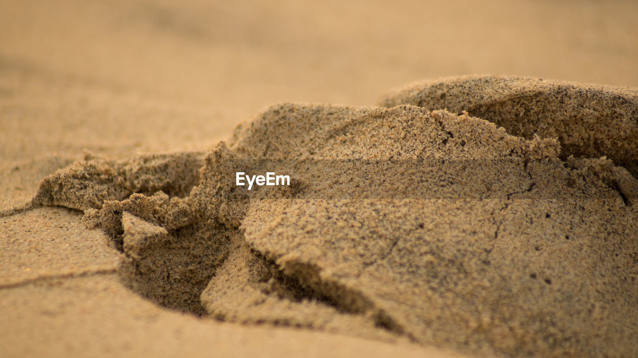 close-up, selective focus, land, no people, sand, textured, brown, nature, focus on foreground, day, outdoors, beach, still life, desert, rock, food and drink, beige, dirt, rough, arid climate