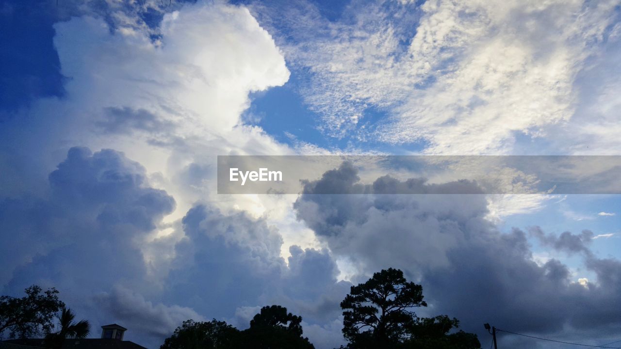 cloud - sky, sky, tree, beauty in nature, low angle view, scenics - nature, tranquility, no people, plant, nature, tranquil scene, outdoors, day, idyllic, non-urban scene, sunlight, silhouette, growth, white color, meteorology