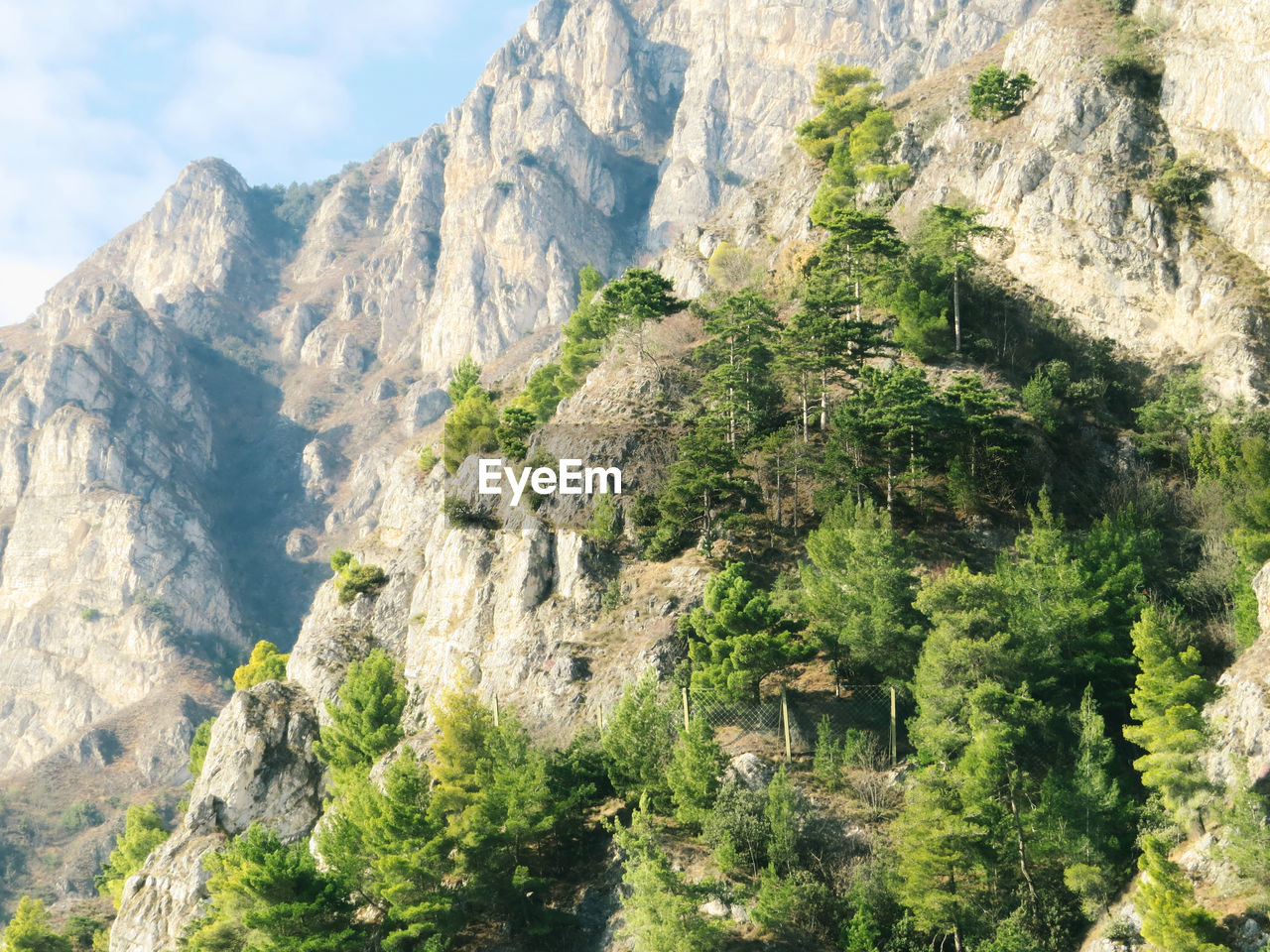 Beauty In Nature Day Environment Formation Geology Growth In Nature Landscape Landscape_photography Mountain Mountain Peak Nature No People Non-urban Scene Outdoors Pine Trees Plant Rock Rock Formation Scenics - Nature Tranquil Scene Tree The Great Outdoors - 2018 EyeEm Awards