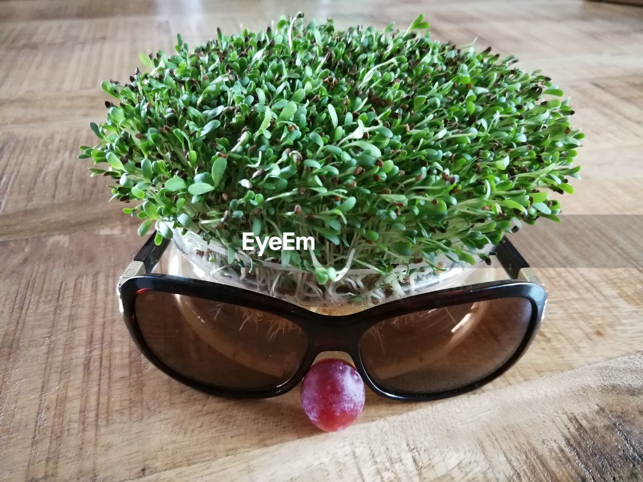 glasses, green color, table, sunglasses, fashion, plant, wood - material, indoors, leaf, plant part, still life, close-up, food and drink, no people, food, nature, freshness, growth, herb, glass - material, eyewear, personal accessory