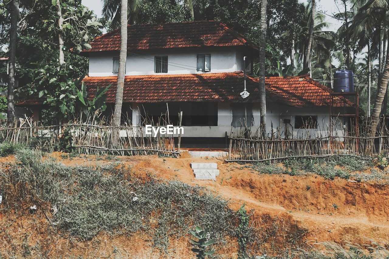 architecture, built structure, building exterior, building, house, roof, residential district, tree, no people, plant, nature, day, outdoors, land, hut, wood - material, abandoned, cottage, forest, old, roof tile