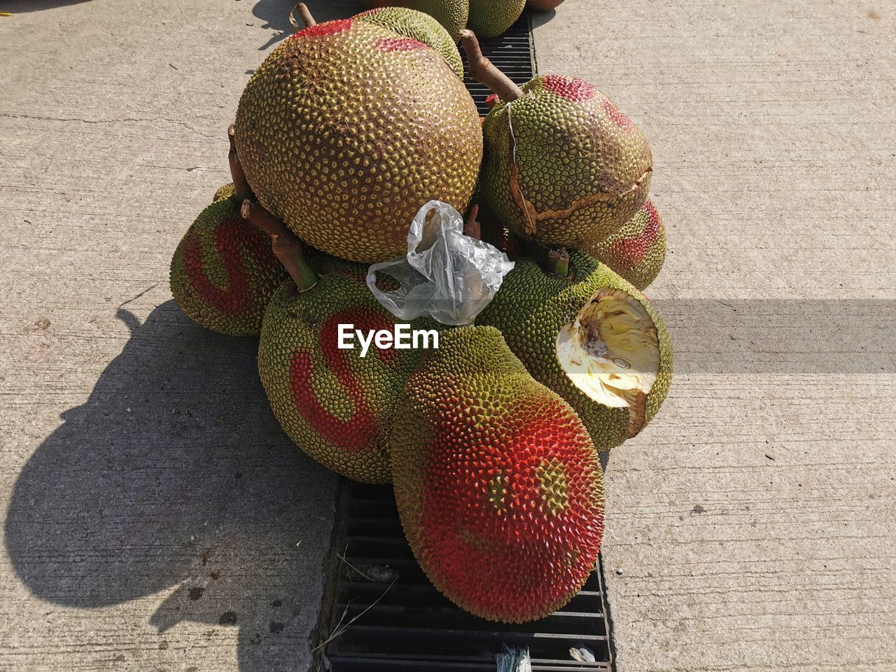 HIGH ANGLE VIEW OF FRUITS AND PLANT