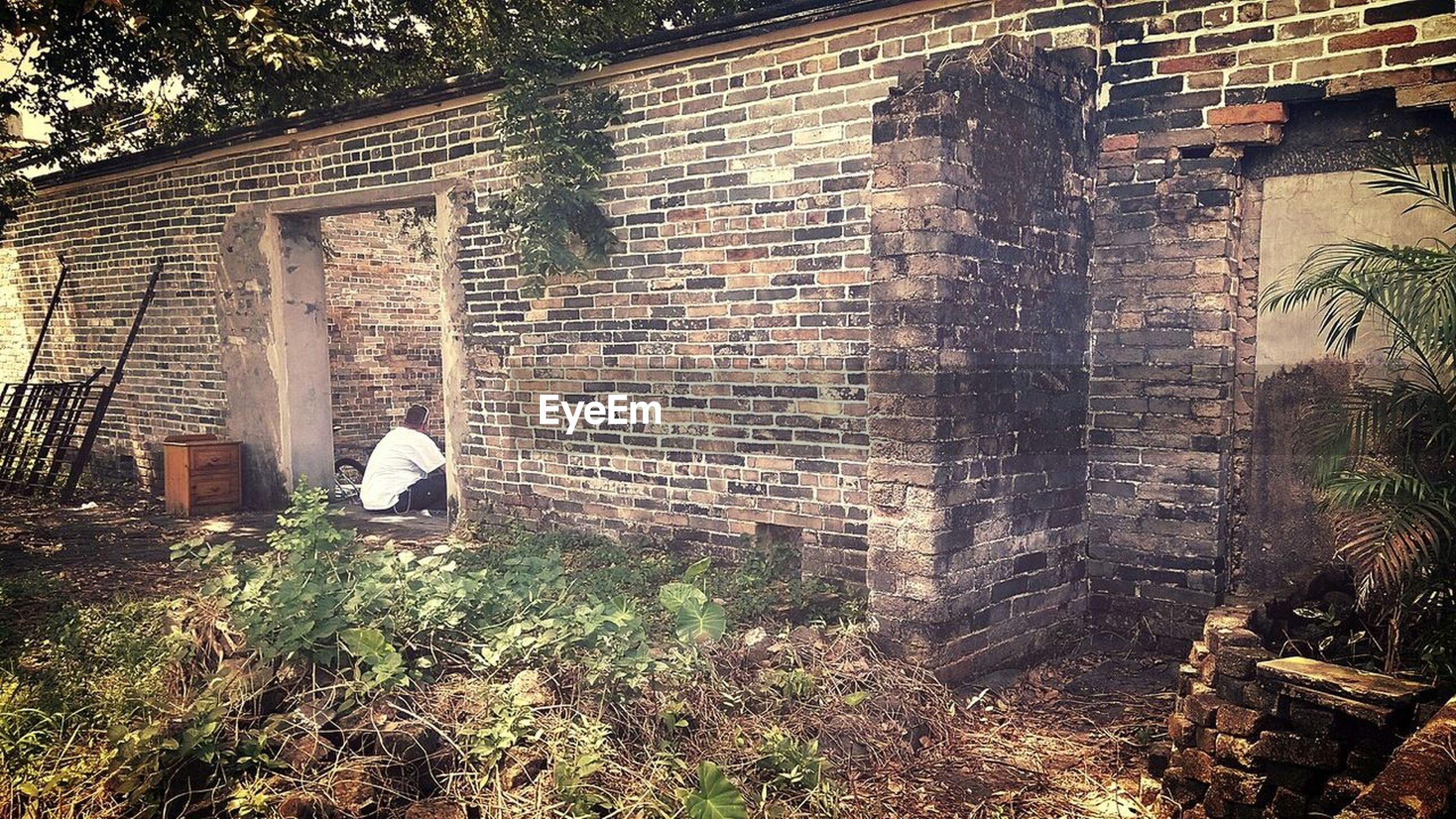 architecture, built structure, building exterior, abandoned, brick wall, wall - building feature, old, building, window, plant, damaged, obsolete, house, stone wall, day, outdoors, weathered, run-down, deterioration, no people