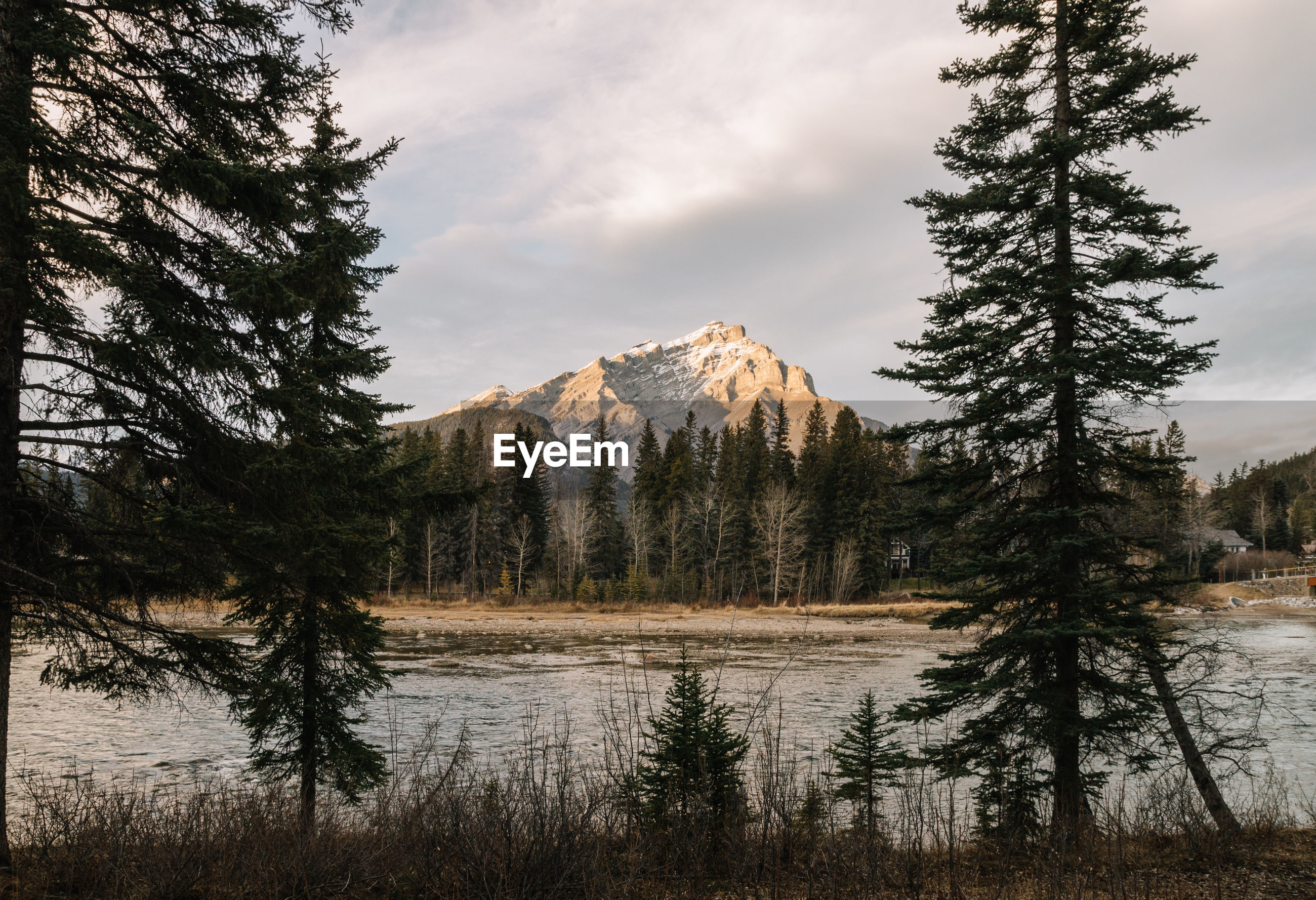 Scenic view of river by trees and mountain against cloudy sky