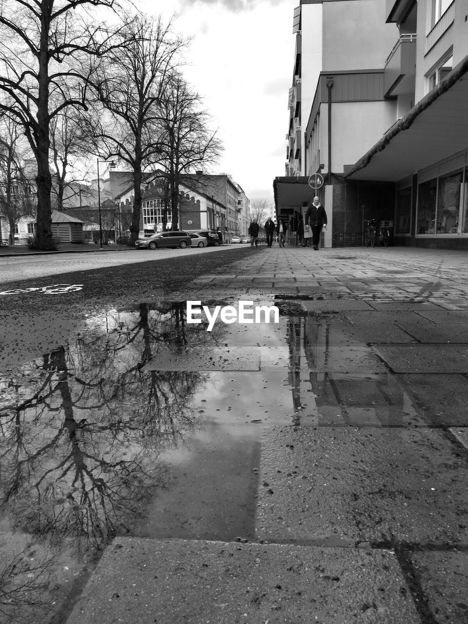 built structure, building exterior, architecture, bare tree, street, tree, outdoors, wet, puddle, day, sky, water, road, city, no people
