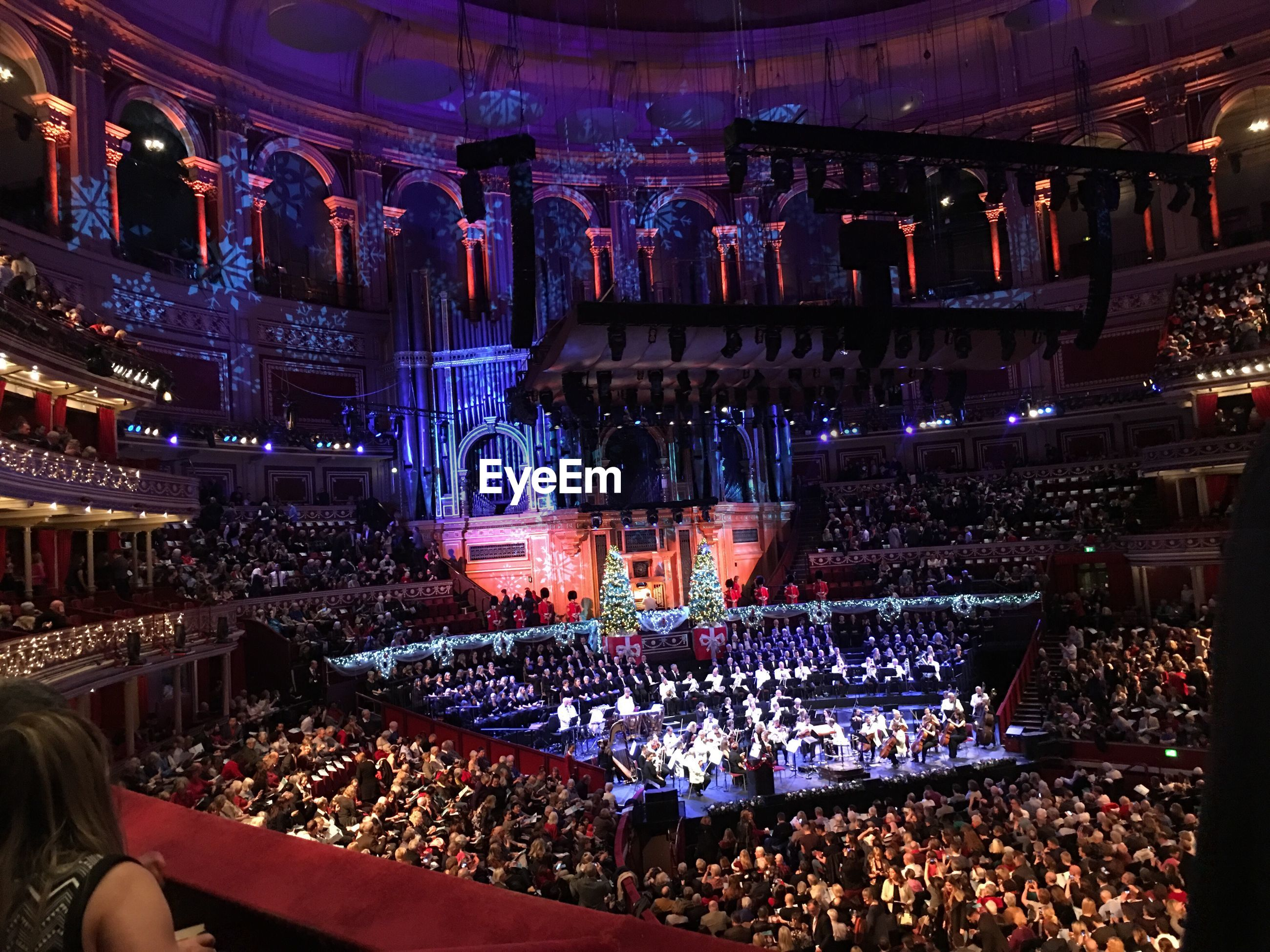 large group of people, crowd, real people, night, music, illuminated, audience, men, performance, leisure activity, women, indoors, lifestyles, people