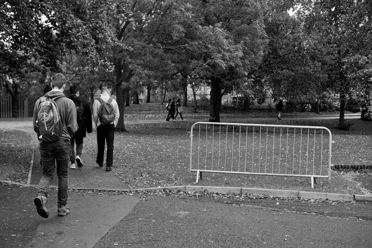 GROUP OF PEOPLE WALKING IN PARK
