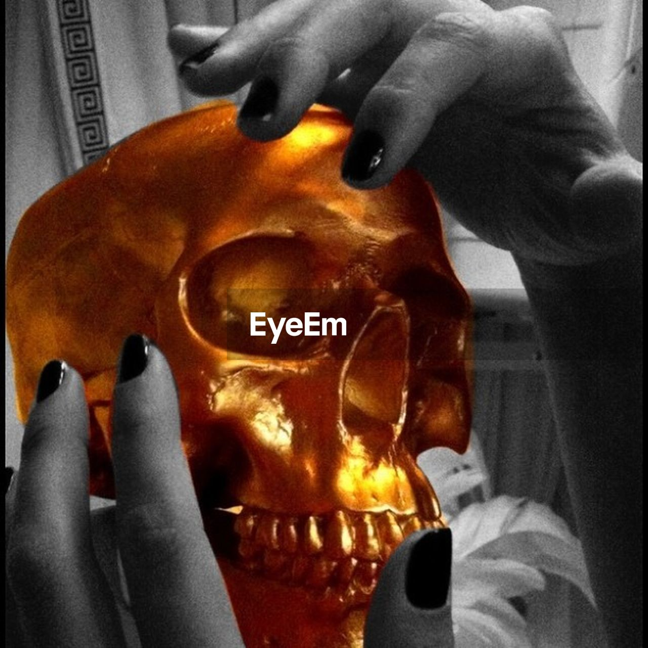 human body part, human hand, human representation, human skull, human skeleton, indoors, one person, human bone, bone, real people, skeleton, close-up, spooky, science, halloween, food, jack o lantern, day, people