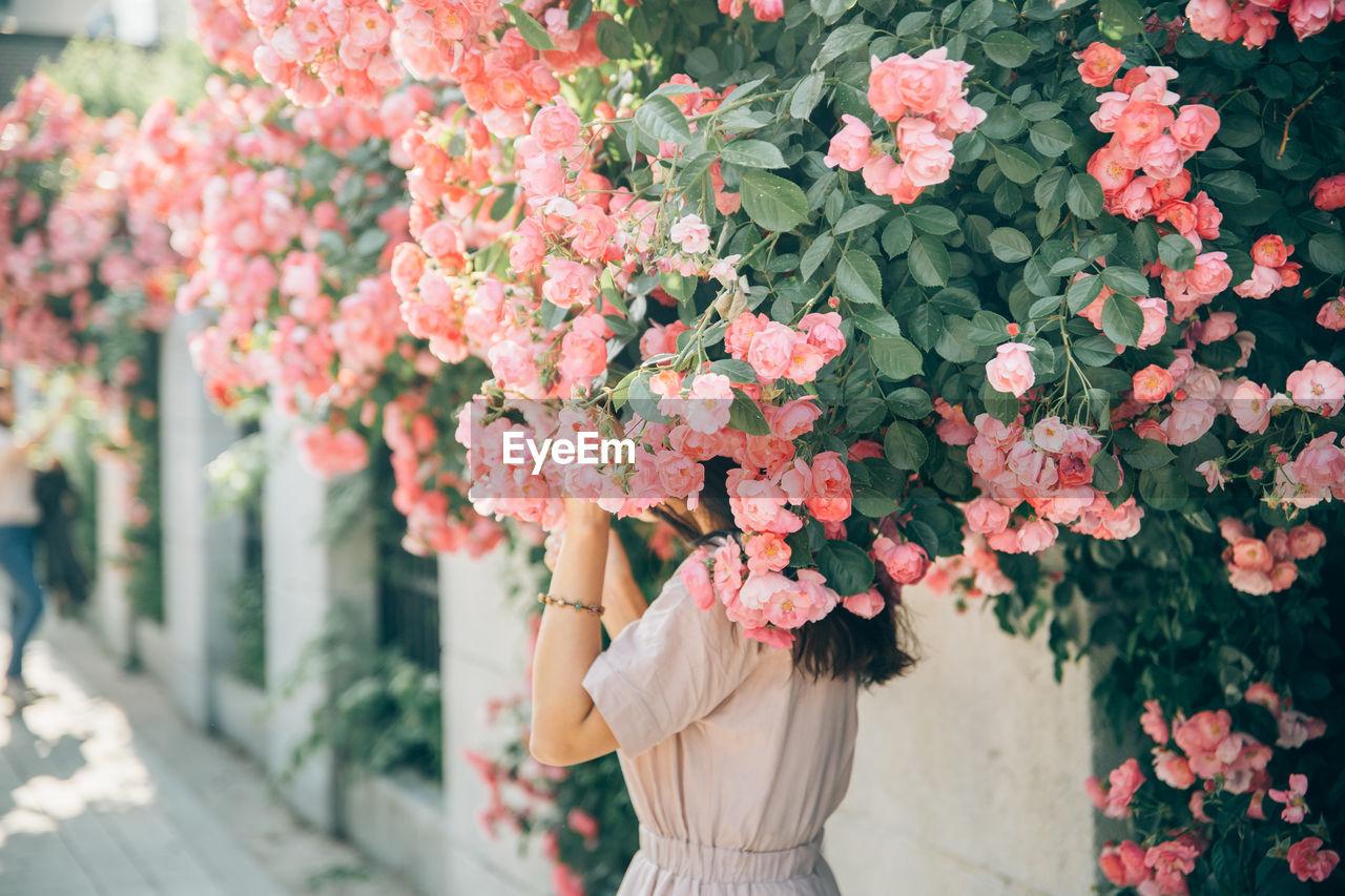 Woman Standing Below Pink Flowering Plants