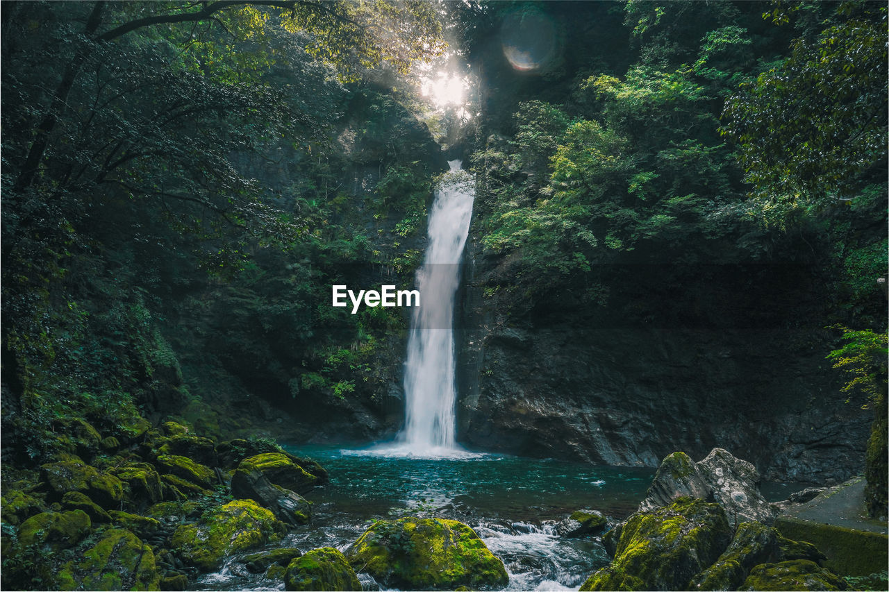 water, waterfall, scenics - nature, beauty in nature, motion, long exposure, forest, tree, rock, flowing water, nature, land, plant, rock - object, blurred motion, rock formation, solid, power in nature, environment, no people, outdoors, rainforest, flowing, falling water