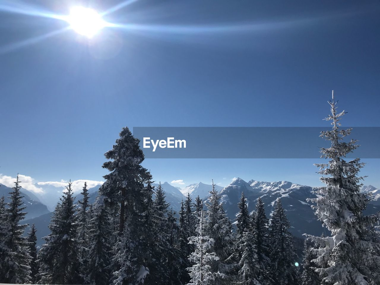 sky, plant, snow, winter, cold temperature, beauty in nature, tranquility, tree, sun, nature, tranquil scene, no people, day, sunlight, scenics - nature, low angle view, growth, sunbeam, lens flare, outdoors, bright, snowcapped mountain, coniferous tree, pine tree