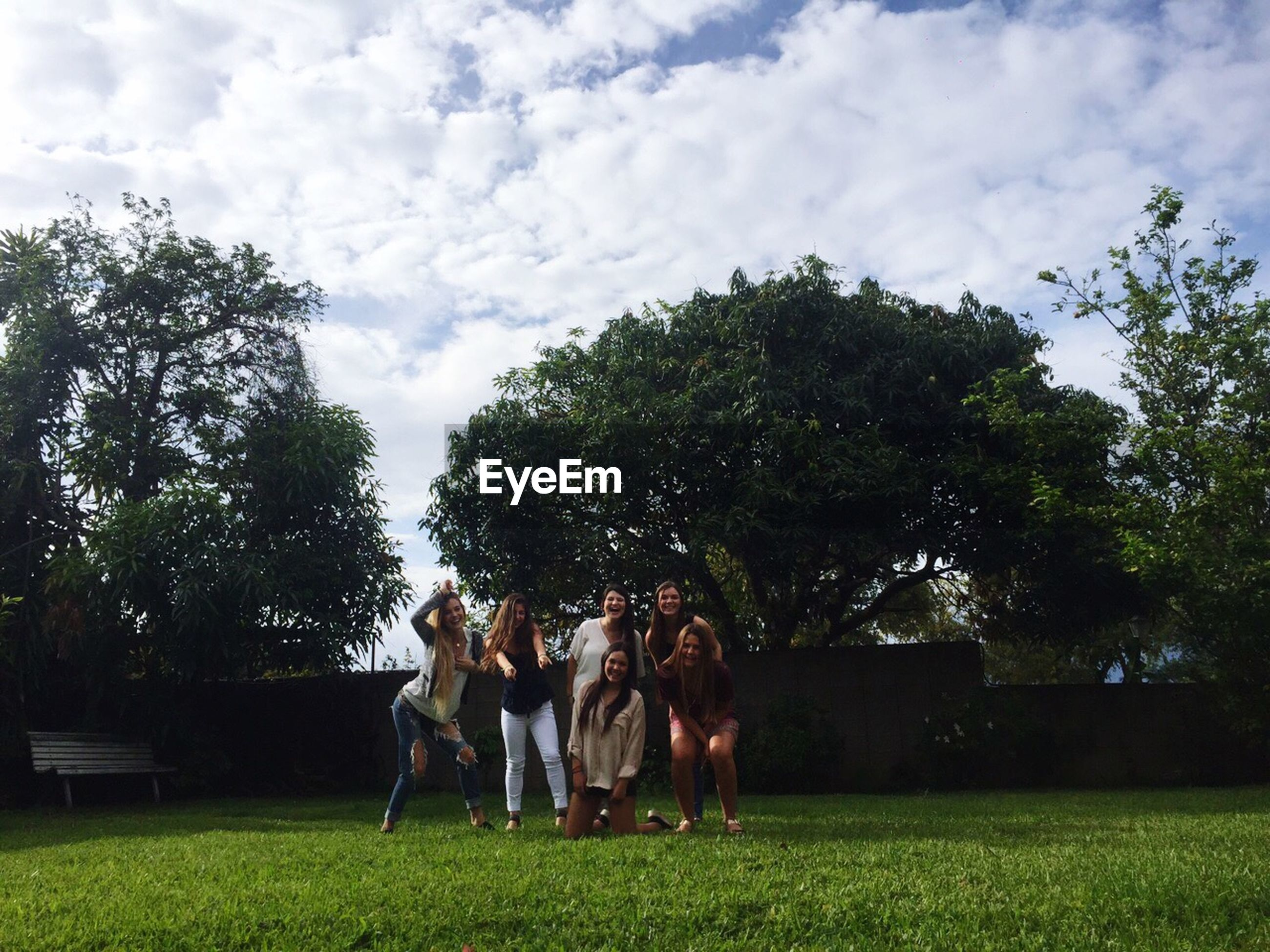 men, grass, tree, lifestyles, togetherness, leisure activity, person, sky, green color, field, bonding, rear view, full length, park - man made space, friendship, relaxation, growth, love