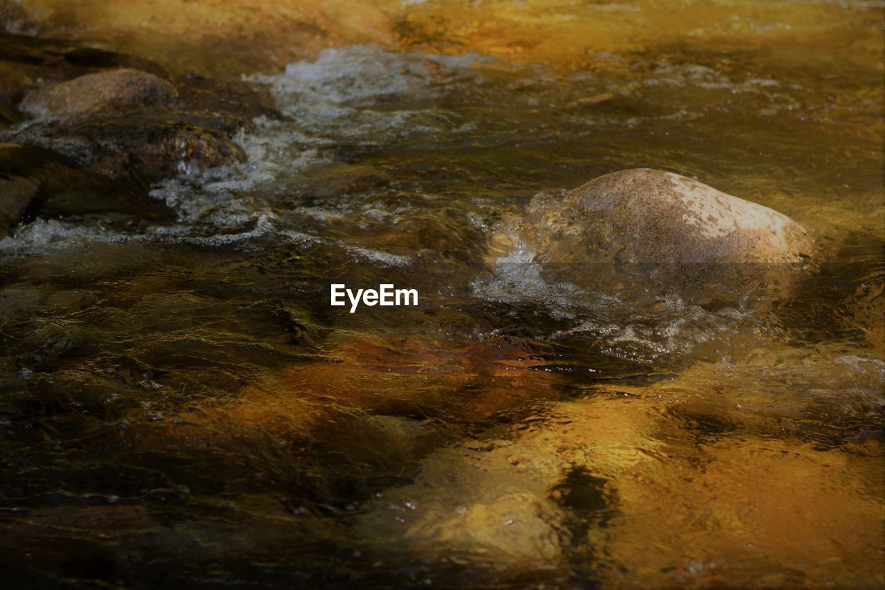 rock - object, nature, no people, water, close-up, outdoors, beauty in nature, day, satellite view