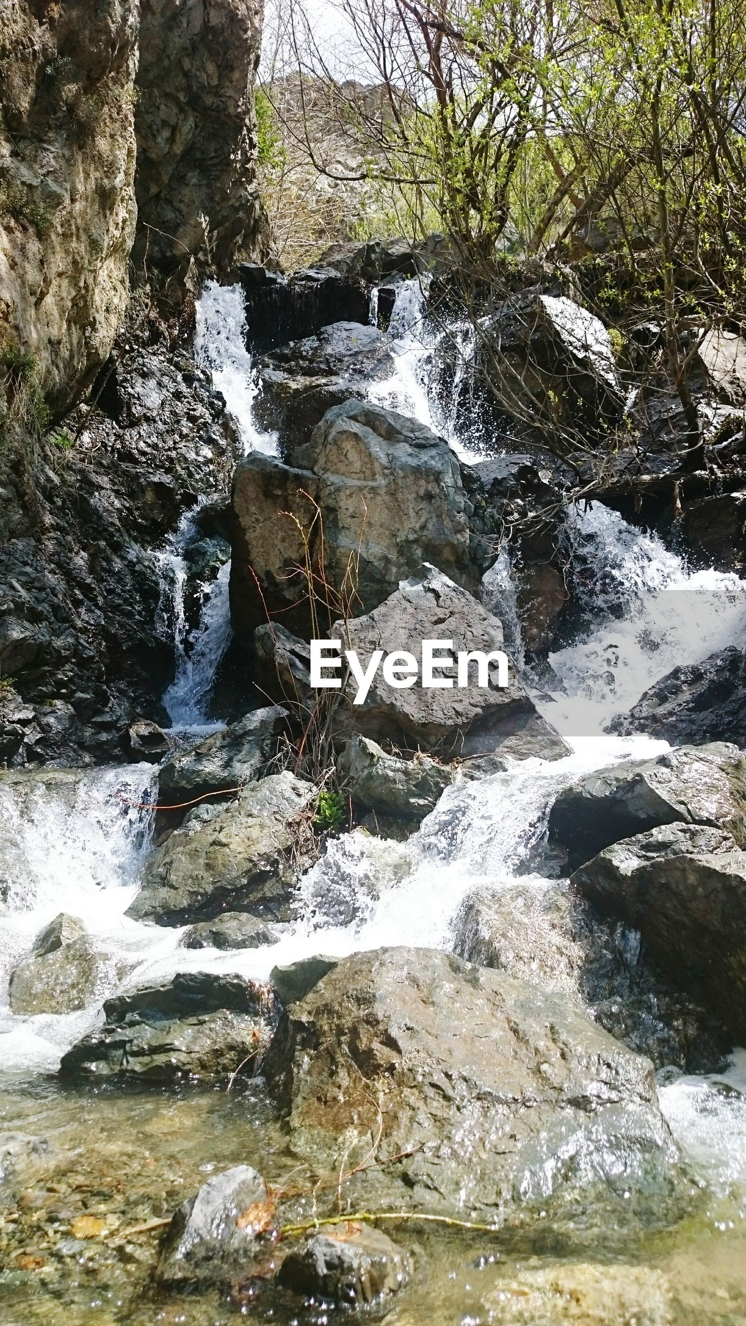 water, rock - object, flowing water, motion, nature, beauty in nature, stream, flowing, waterfall, scenics, rock, forest, tree, river, tranquility, rock formation, day, outdoors, long exposure, no people