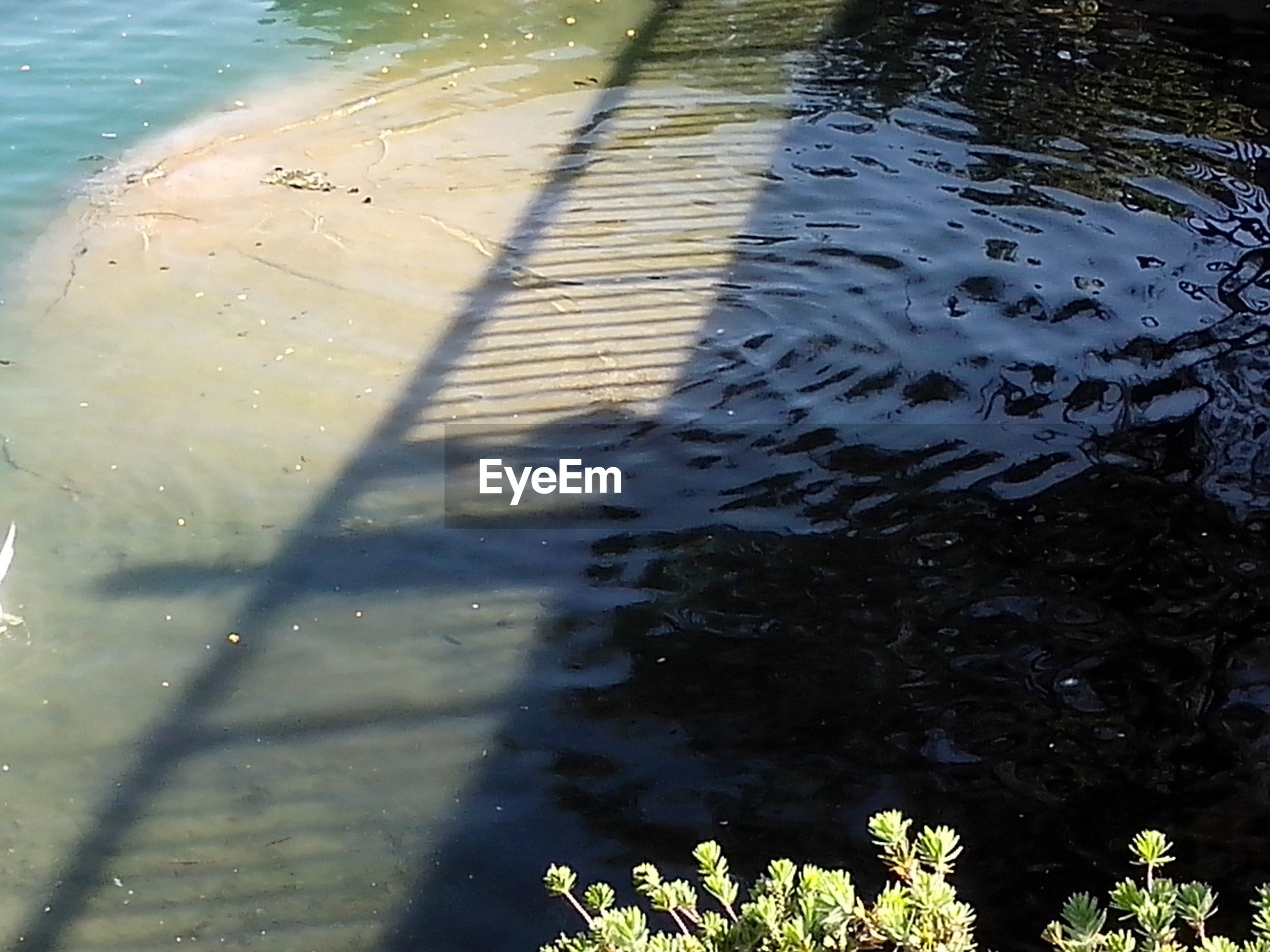 Shadow of bridge and railing reflecting in water