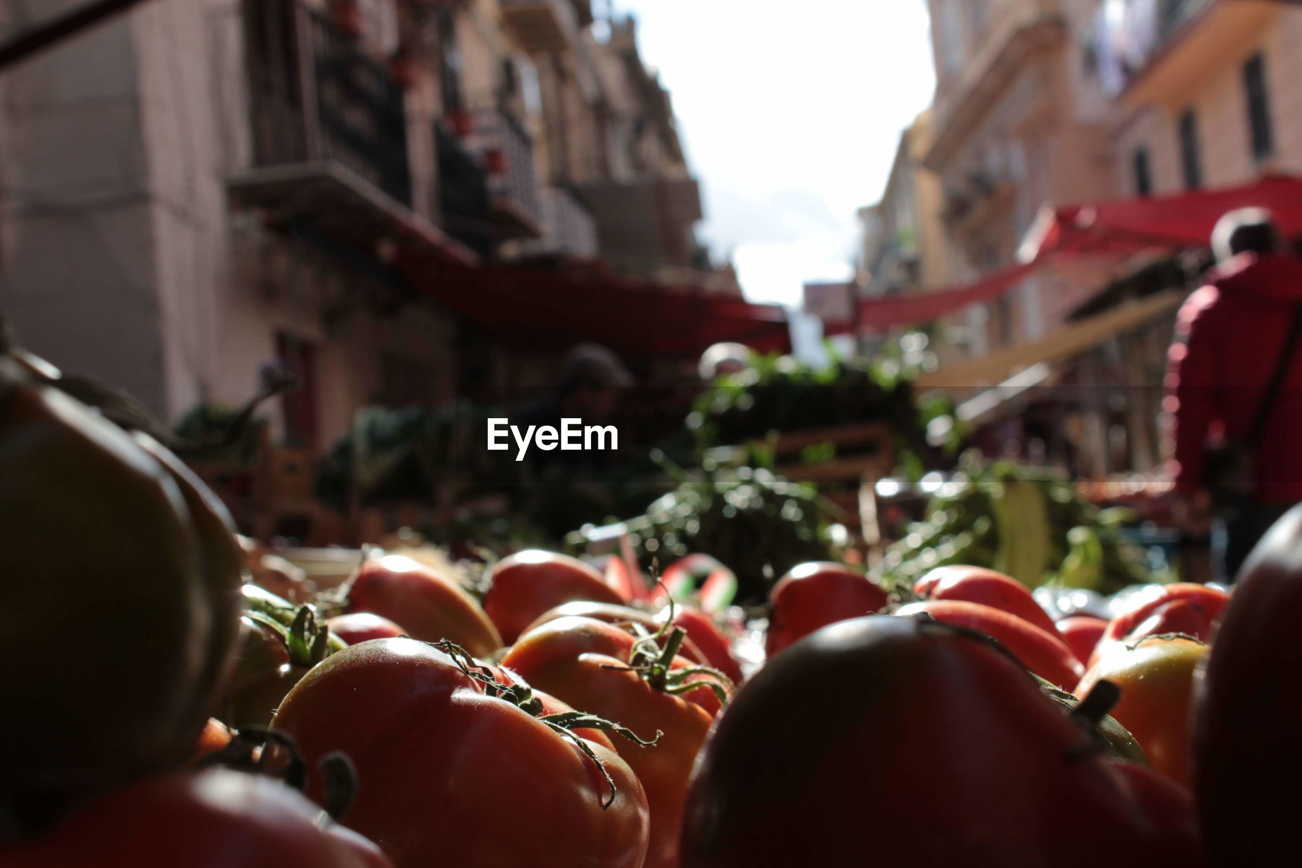 Close-up of tomatoes in market for sale