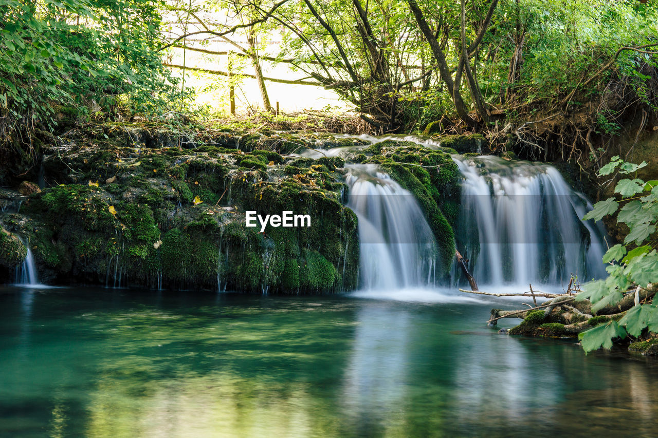 water, tree, motion, waterfall, scenics - nature, forest, beauty in nature, long exposure, plant, flowing water, nature, blurred motion, land, environment, river, day, no people, flowing, rainforest, outdoors, power in nature, falling water