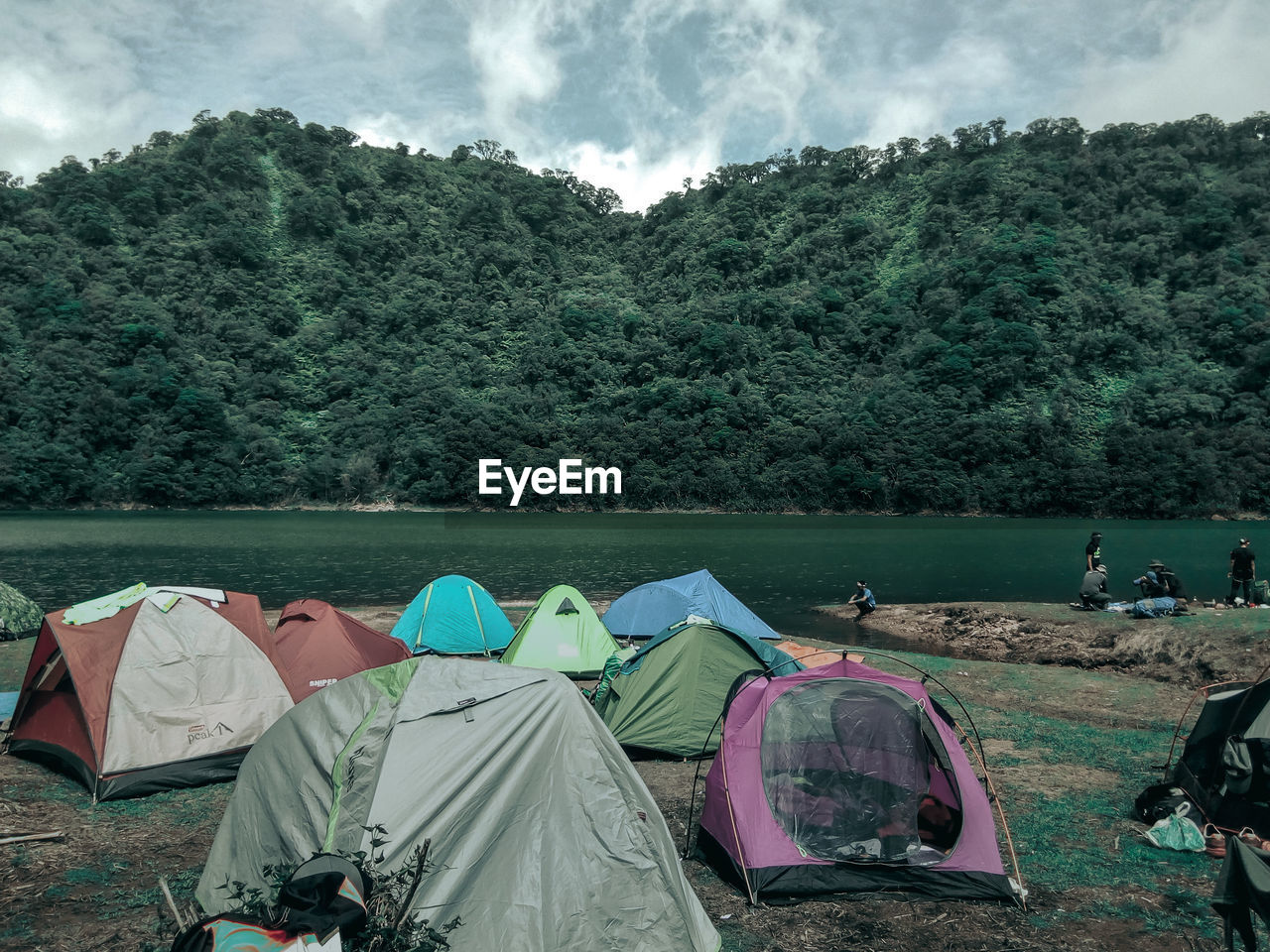 tree, plant, tent, camping, nature, sky, land, cloud - sky, day, green color, group of people, real people, forest, people, non-urban scene, beauty in nature, adventure, transportation, growth, shelter