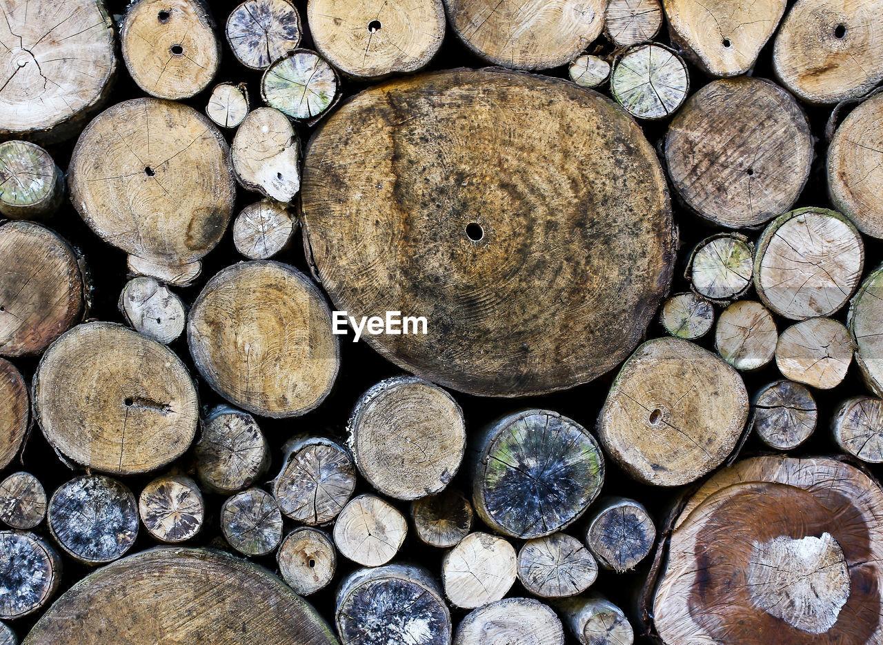 FULL FRAME SHOT OF WOODEN LOGS IN FOREST