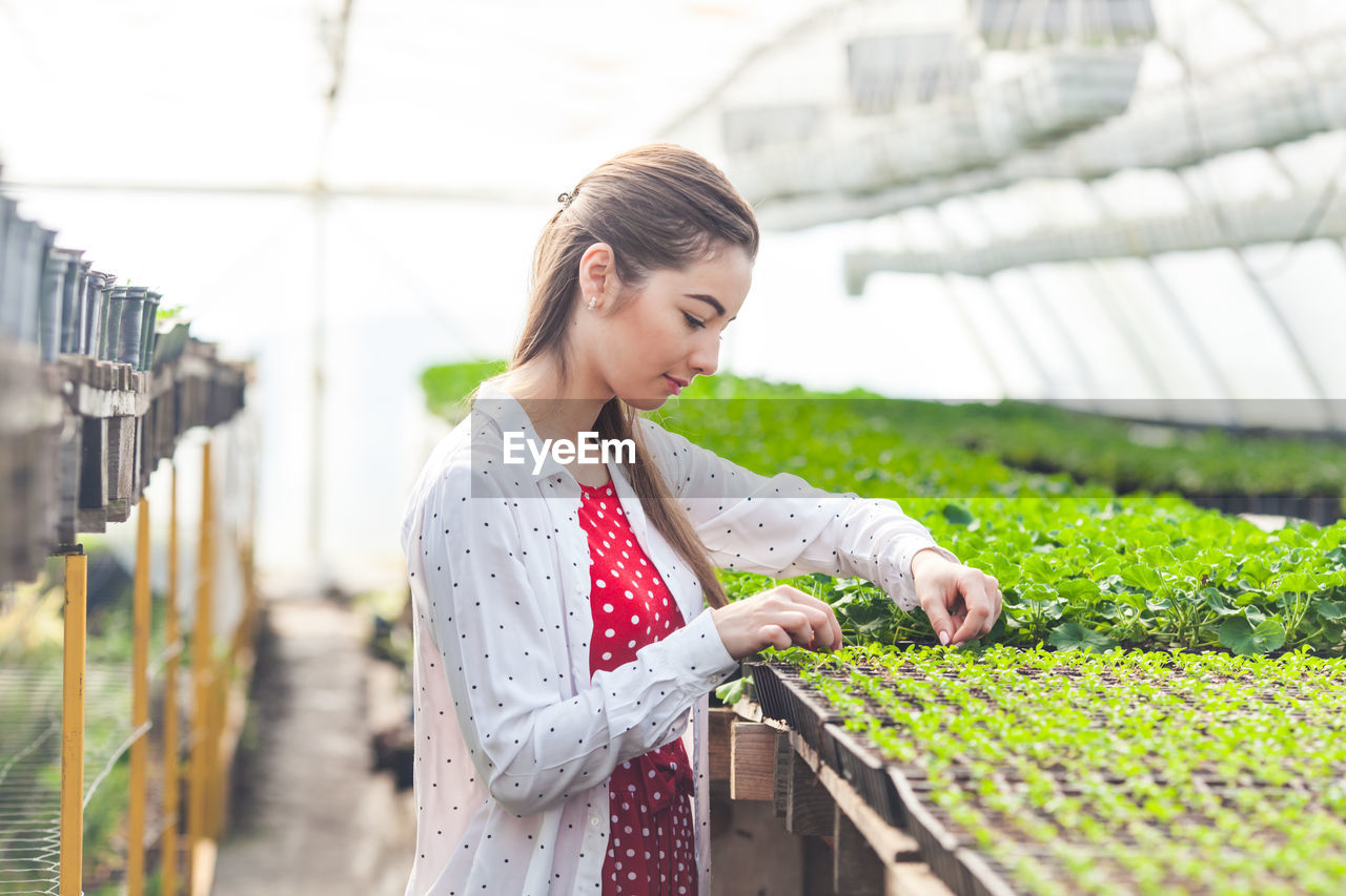 Young woman looking away while standing in greenhouse