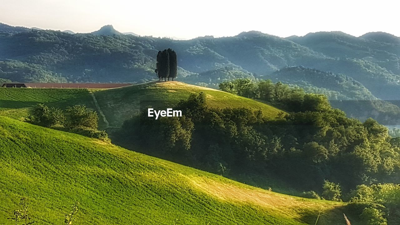 mountain, nature, landscape, beauty in nature, tranquil scene, tranquility, no people, green color, high angle view, tree, scenics, mountain range, day, grass, sky, growth, outdoors, architecture