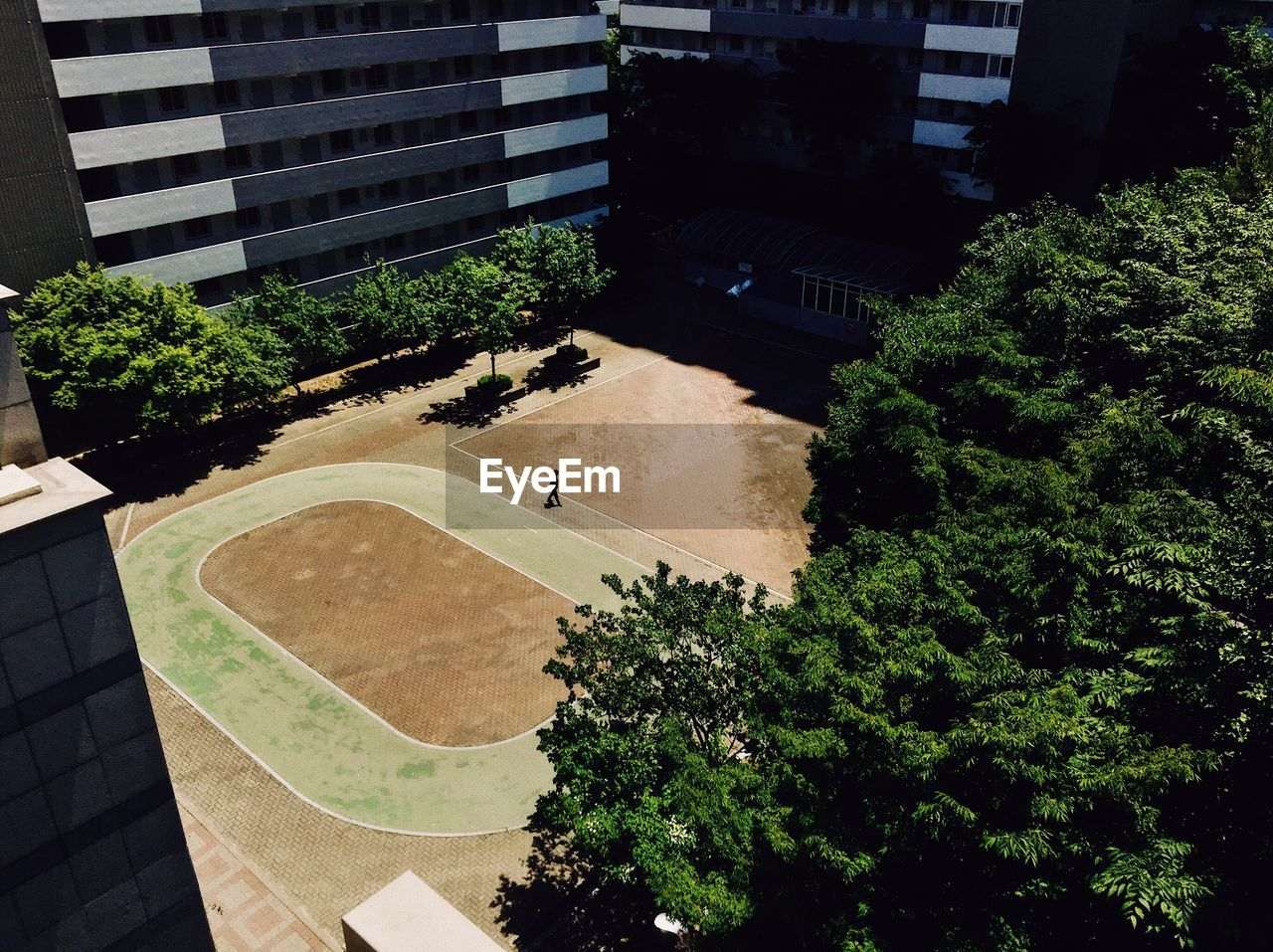 architecture, building exterior, tree, built structure, growth, high angle view, plant, outdoors, city, sport, court, modern, no people, day, nature, skateboard park