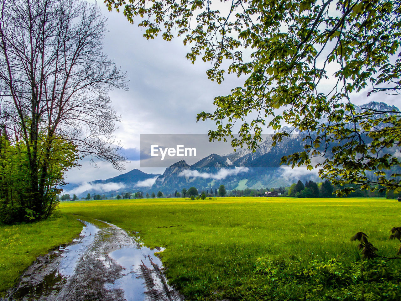 Green Meadow With Mountains In Background Under Overcast Sky