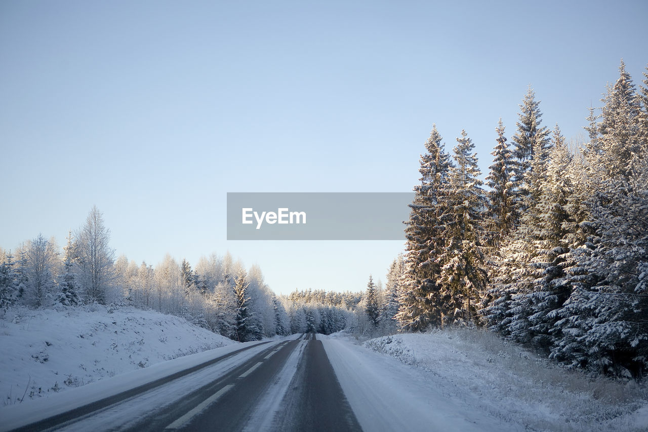 snow, cold temperature, winter, transportation, sky, tree, plant, covering, the way forward, road, beauty in nature, no people, scenics - nature, tranquility, nature, frozen, direction, tranquil scene, white color, diminishing perspective, outdoors, snowcapped mountain