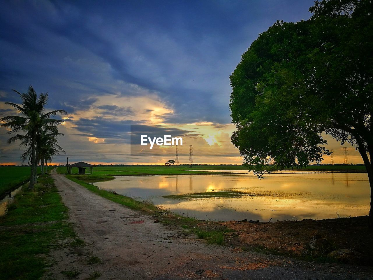 sunset, tree, sky, nature, beauty in nature, water, cloud - sky, reflection, scenics, growth, outdoors, no people, built structure, architecture, day