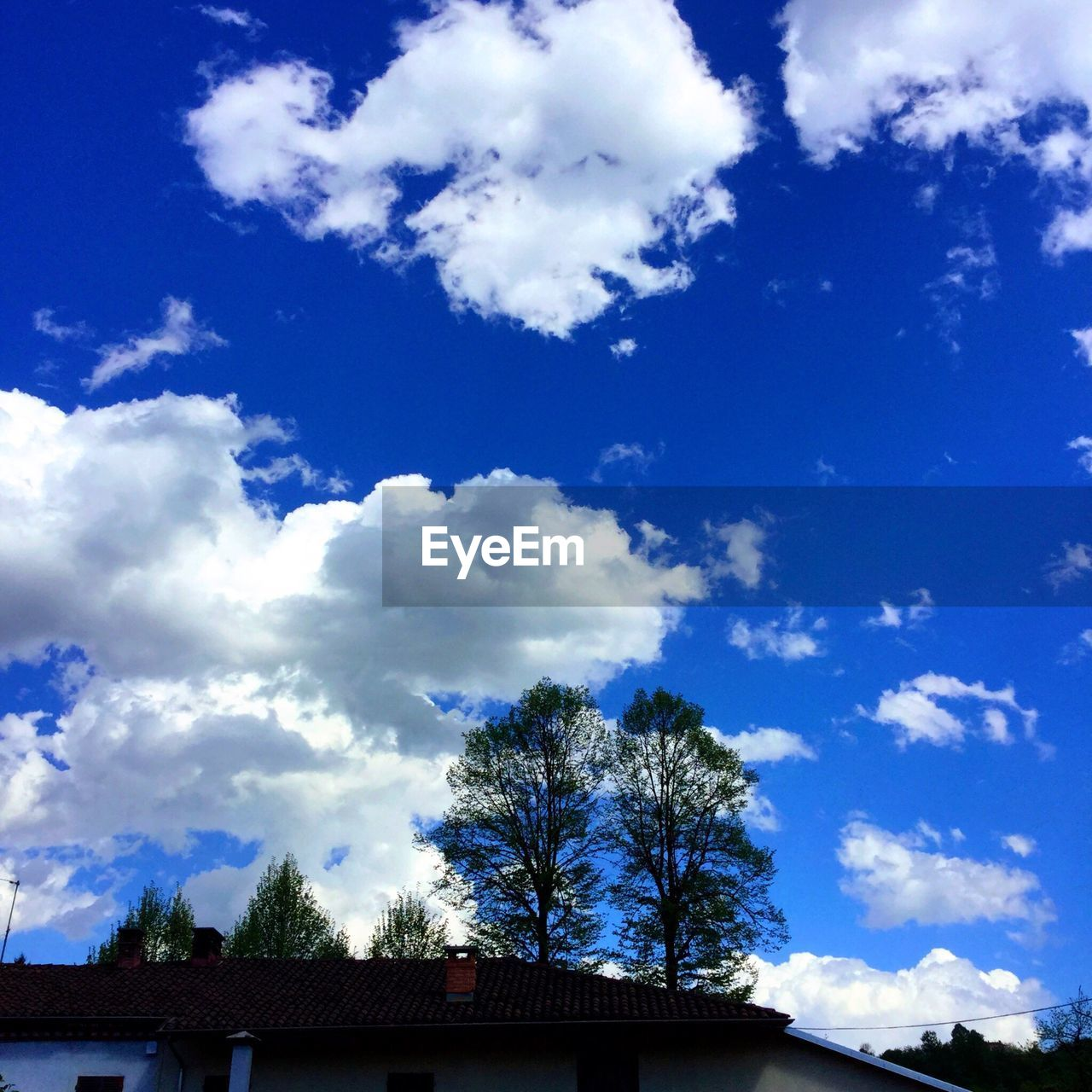 sky, tree, cloud - sky, low angle view, blue, no people, day, nature, architecture, beauty in nature, outdoors