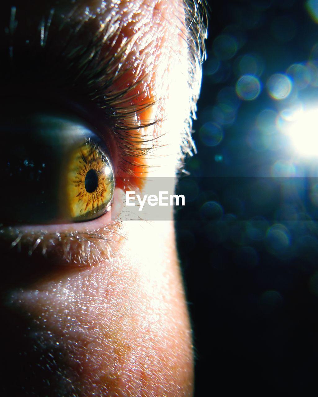 Close-up of man looking away