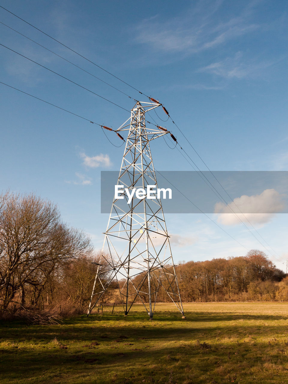 Alternative Energy Cable Cloud - Sky Connection Day Electricity  Electricity Pylon Field Fuel And Power Generation Grass Industrial Windmill Landscape Low Angle View Nature No People Outdoors Power Line  Power Supply Rural Scene Sky Technology Tree Wind Power Wind Turbine Windmill