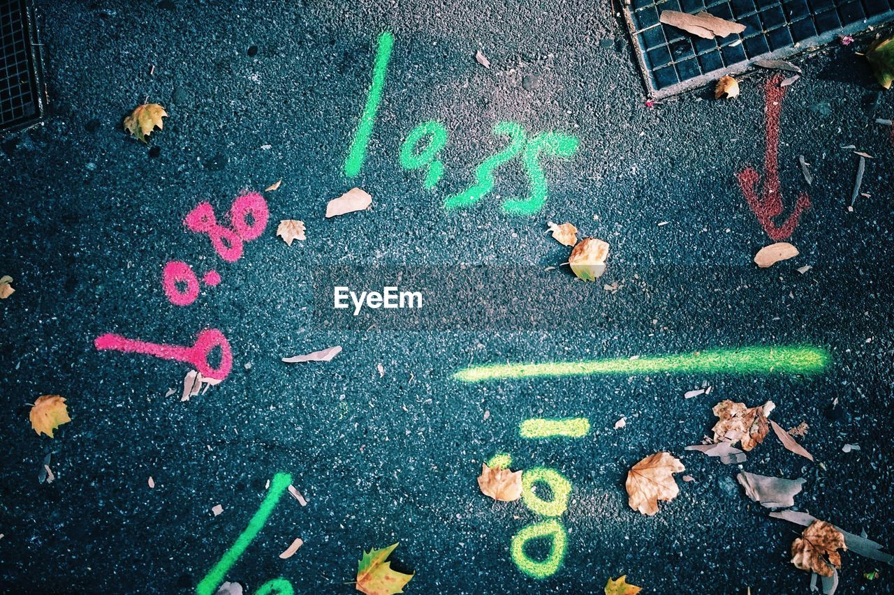 high angle view, text, street, city, communication, road, no people, day, western script, chalk drawing, asphalt, outdoors, plant part, leaf, transportation, multi colored, nature, wet, chalk - art equipment, number, leaves