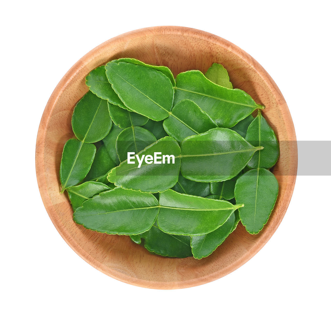 white background, green color, leaf, plant part, directly above, studio shot, indoors, food and drink, cut out, close-up, still life, freshness, wellbeing, food, healthy eating, no people, high angle view, nature, plant, wood - material, leaves