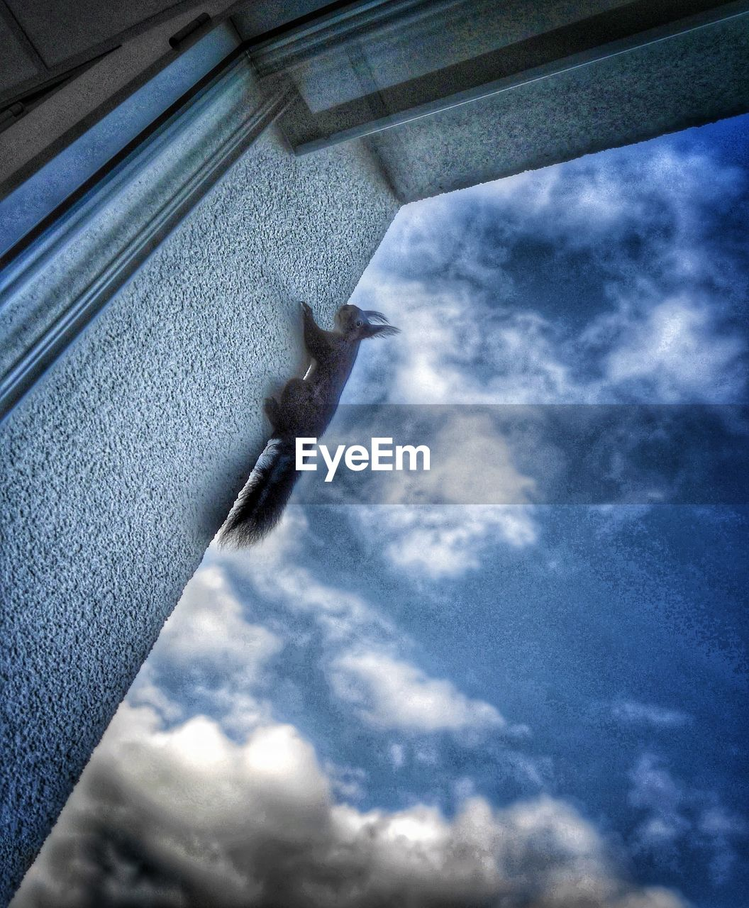 low angle view, cloud - sky, sky, day, architecture, no people, outdoors, built structure, building exterior, blue, statue, close-up