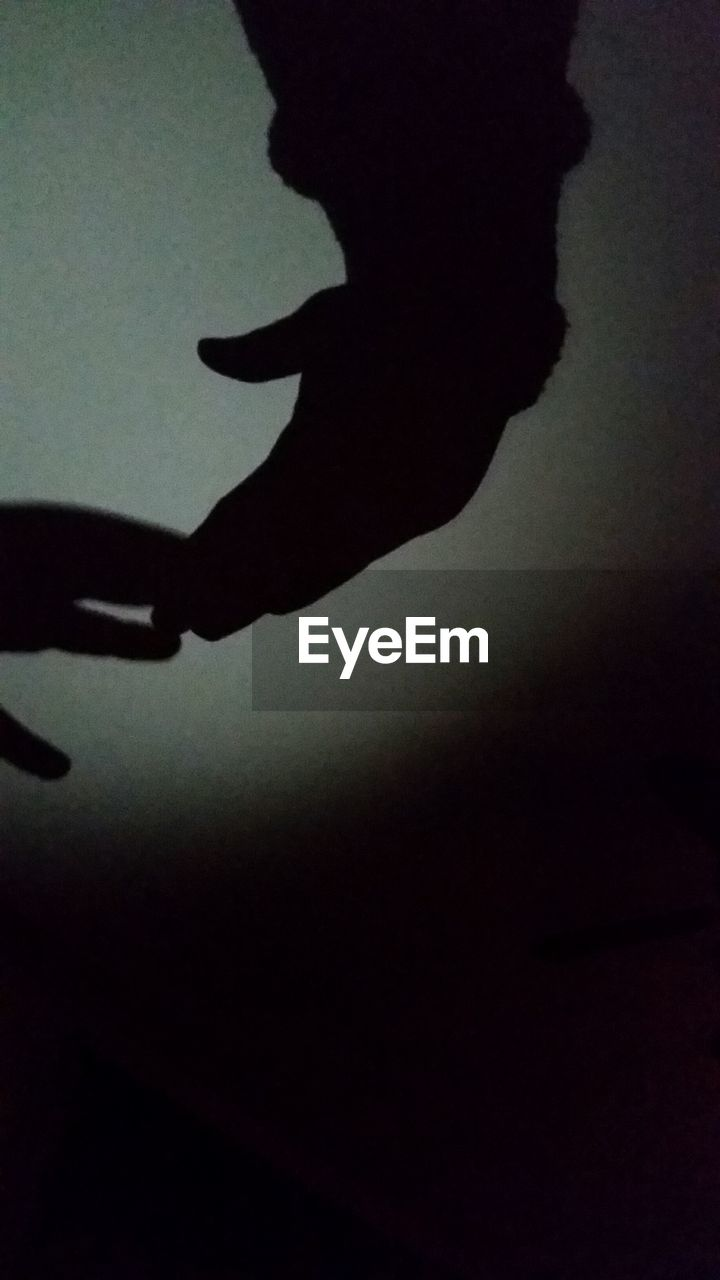 silhouette, shadow, indoors, two people, real people, human hand, human, close-up, people