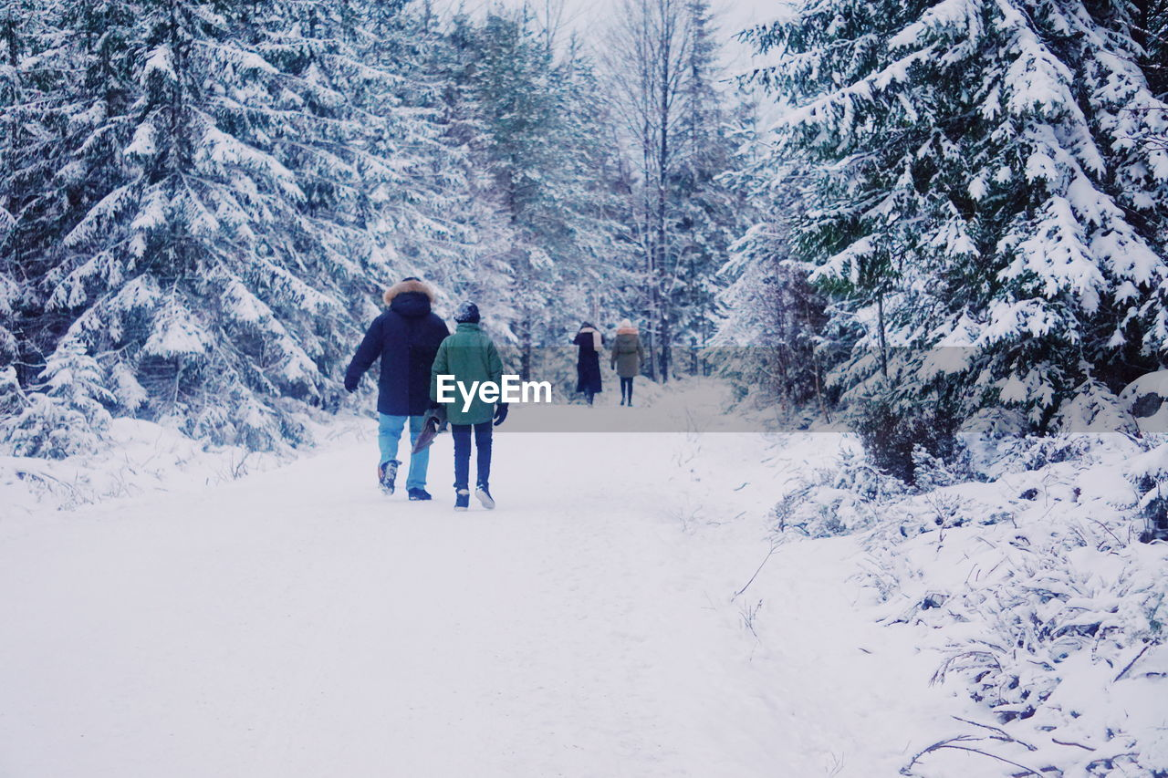 Rear View Of People Walking In Snow Covered Forest